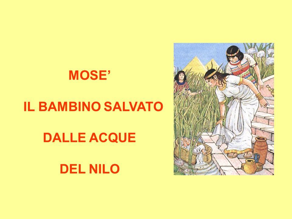 MOSE' IL BAMBINO SALVATO DALLE ACQUE DEL NILO