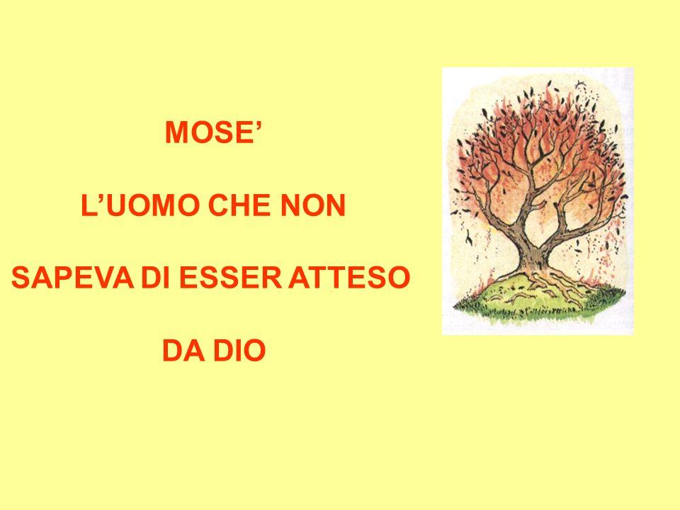 MOSE' L'UOMO CHE NON SAPEVA DI ESSER ATTESO DA DIO