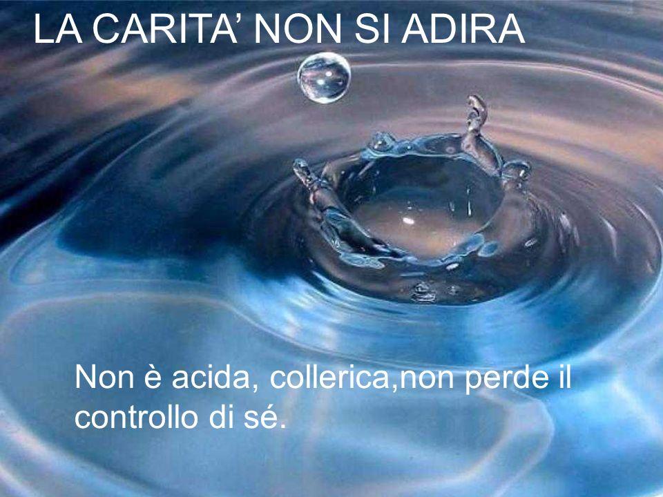 LA CARITA' NON SI ADIRA Non è acida, collerica,non perde il controllo di sé.
