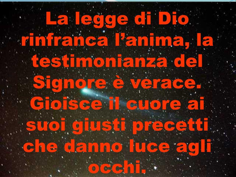 La legge di Dio rinfranca l'anima, la testimonianza del Signore è verace.