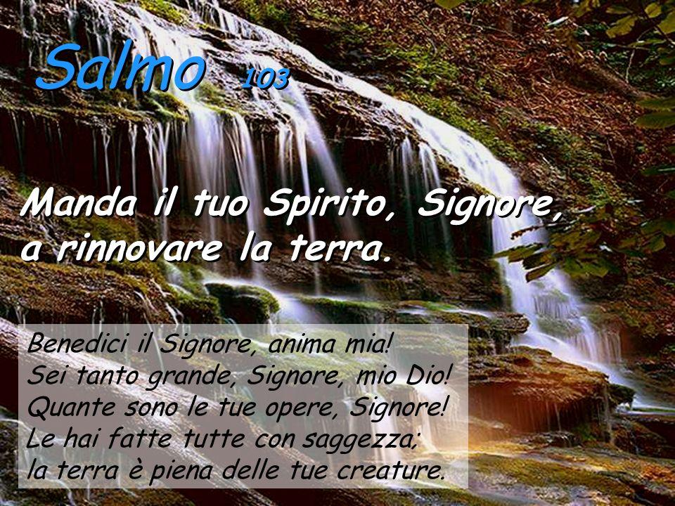 Salmo 103 Manda il tuo Spirito, Signore, a rinnovare la terra.