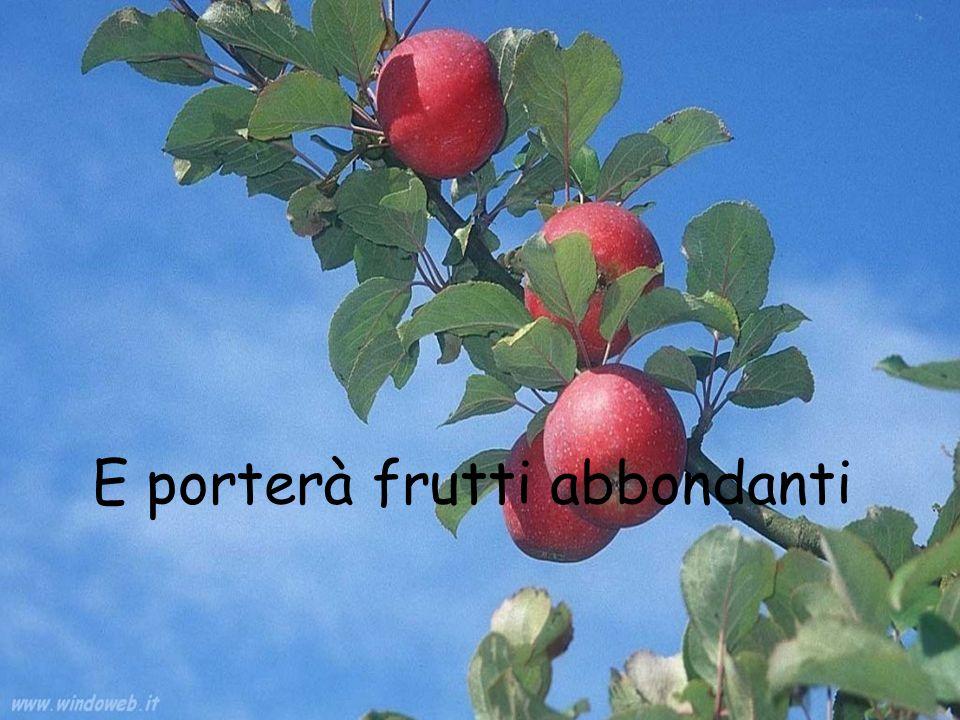 E porterà frutti abbondanti
