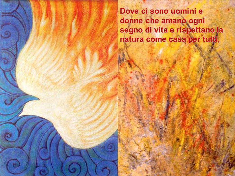 lo Spirito Santo manifesta il progetto di Dio.