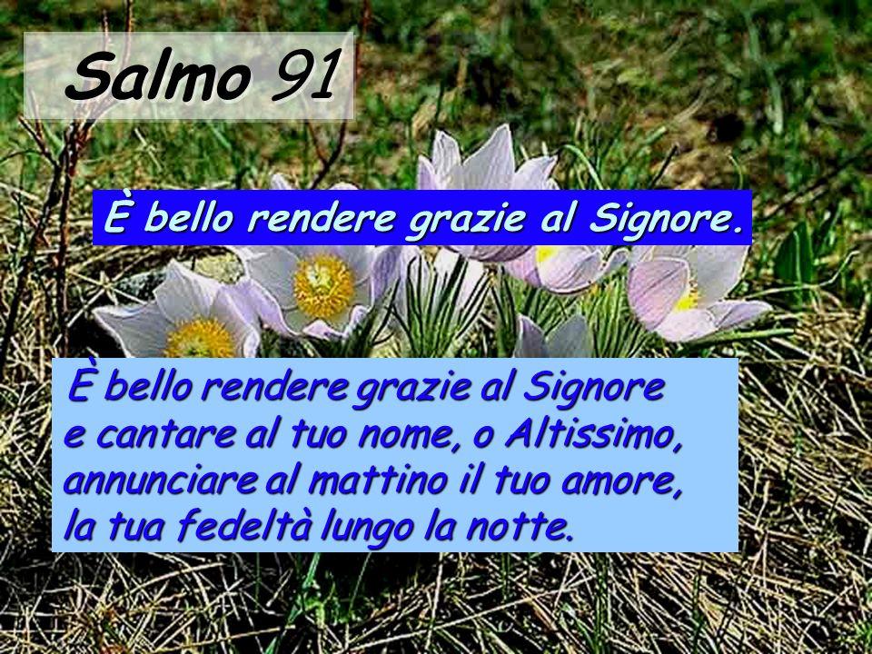 Salmo 91 È bello rendere grazie al Signore.