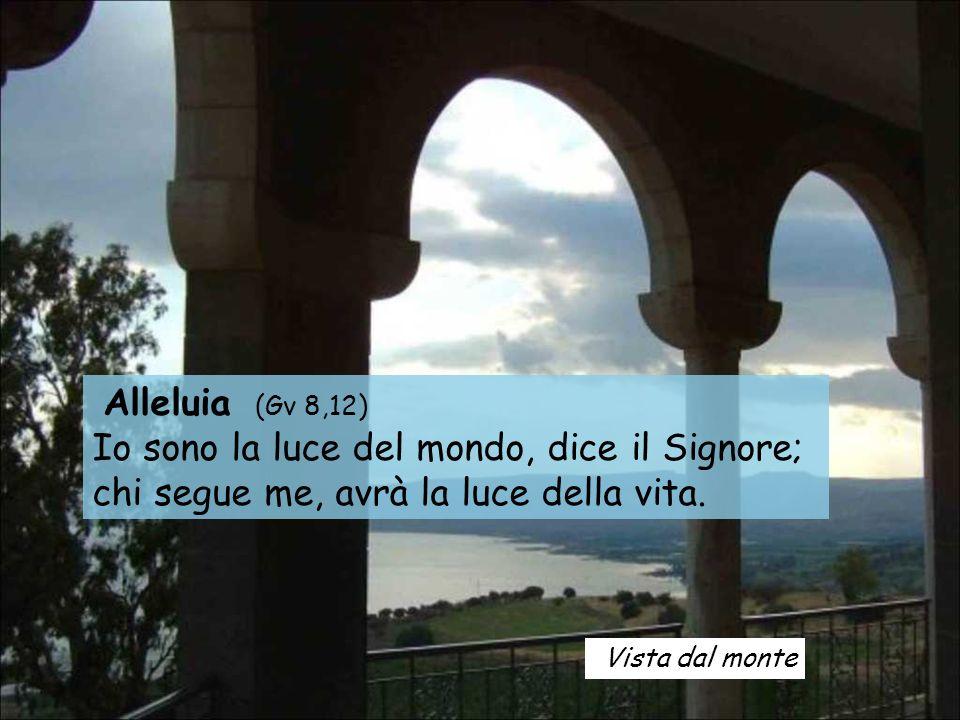 Alleluia (Gv 8,12) Io sono la luce del mondo, dice il Signore;