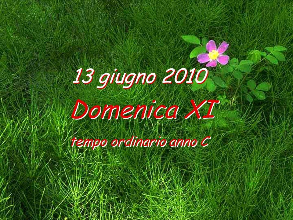 13 giugno 2010 Domenica XI tempo ordinario anno C