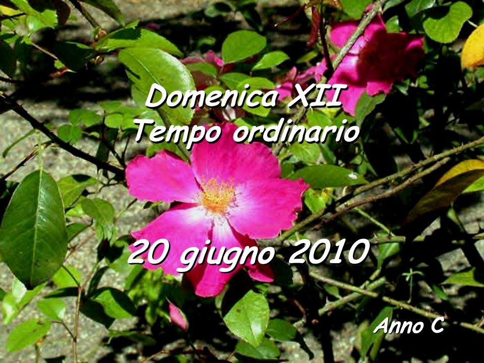 Domenica XII Tempo ordinario 20 giugno 2010 Anno C