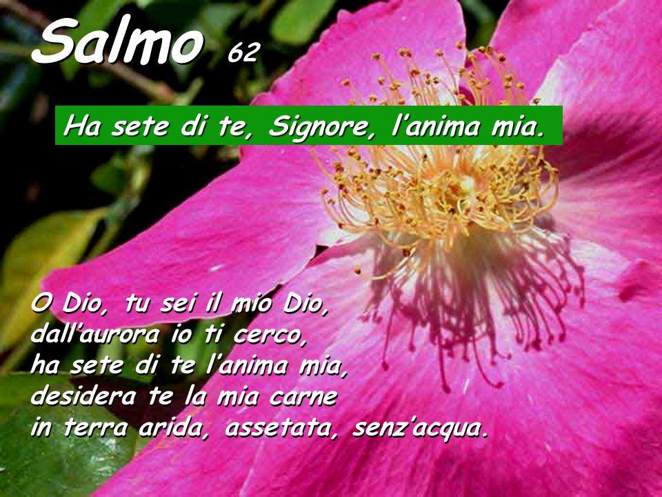 Salmo 62 Ha sete di te, Signore, l'anima mia.
