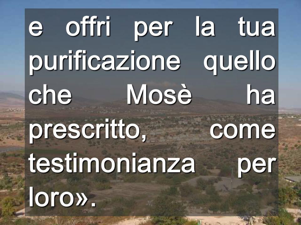 e offri per la tua purificazione quello che Mosè ha prescritto, come testimonianza per loro».