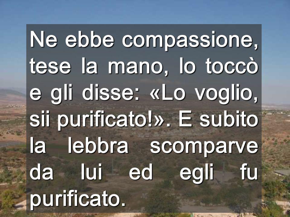 Ne ebbe compassione, tese la mano, lo toccò e gli disse: «Lo voglio, sii purificato!».