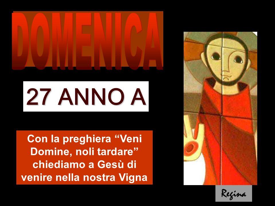 DOMENICA 27 ANNO A. Con la preghiera Veni Domine, noli tardare chiediamo a Gesù di venire nella nostra Vigna.