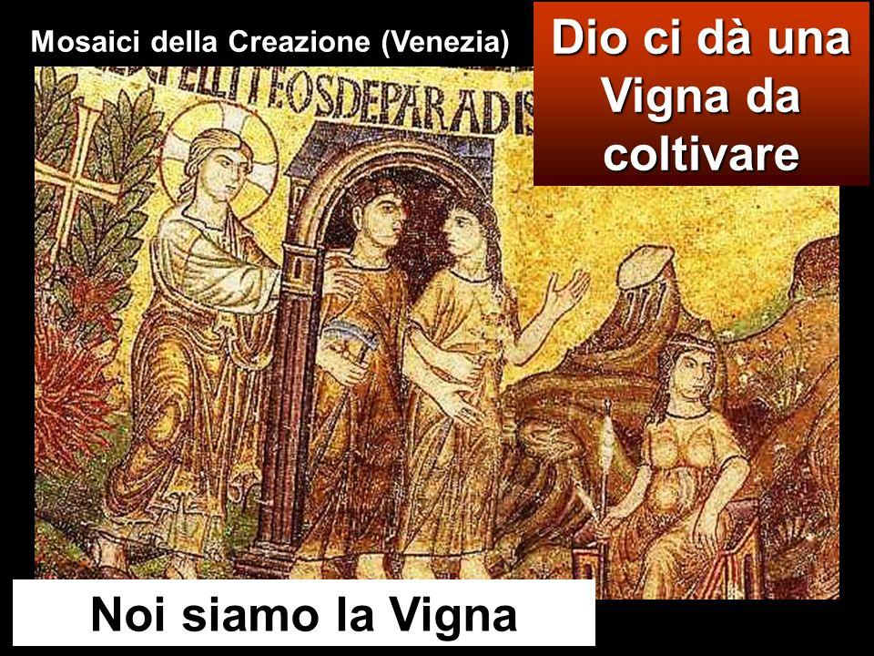 Dio ci dà una Vigna da coltivare Mosaici della Creazione (Venezia)