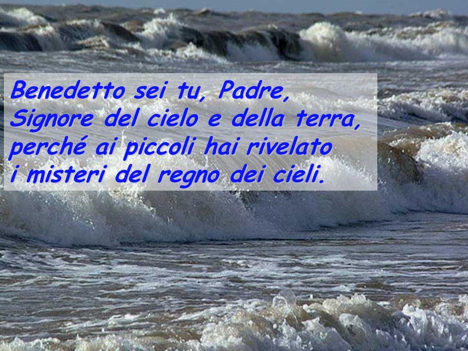 Benedetto sei tu, Padre, Signore del cielo e della terra, perché ai piccoli hai rivelato.