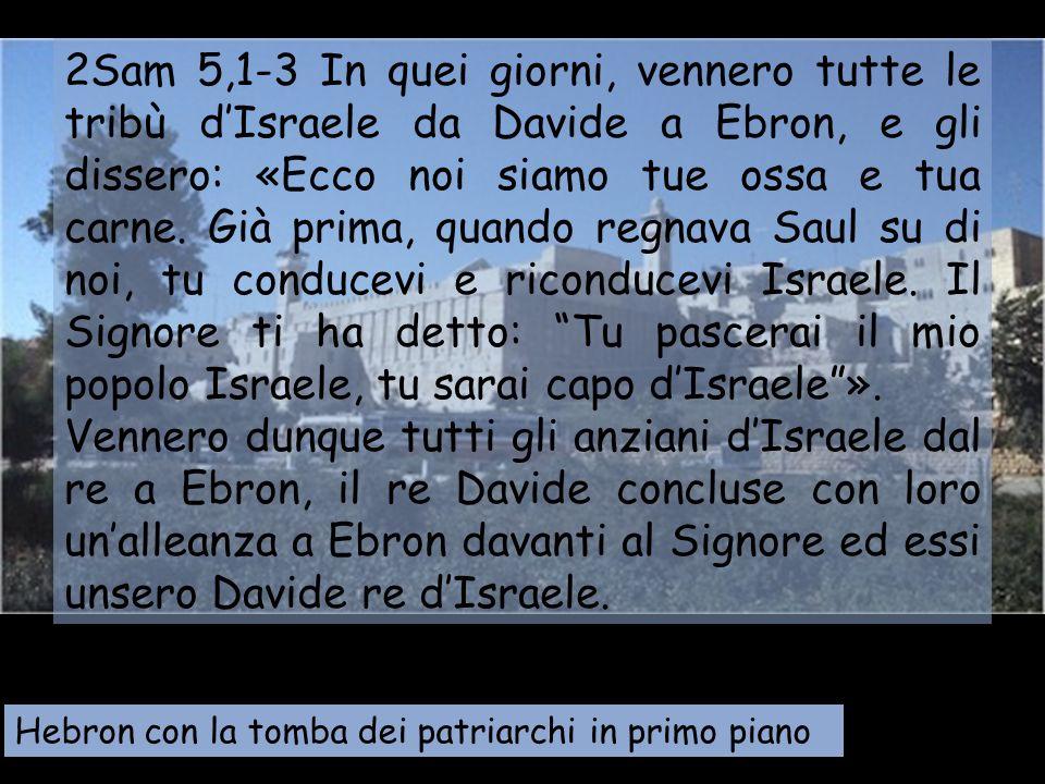 2Sam 5,1-3 In quei giorni, vennero tutte le tribù d'Israele da Davide a Ebron, e gli dissero: «Ecco noi siamo tue ossa e tua carne. Già prima, quando regnava Saul su di noi, tu conducevi e riconducevi Israele. Il Signore ti ha detto: Tu pascerai il mio popolo Israele, tu sarai capo d'Israele ».