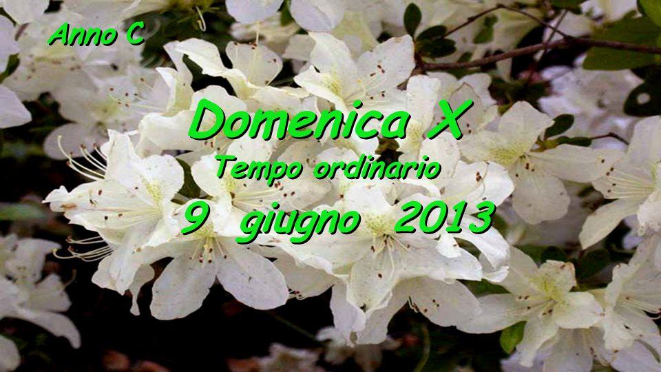 Anno C Domenica X Tempo ordinario 9 giugno 2013