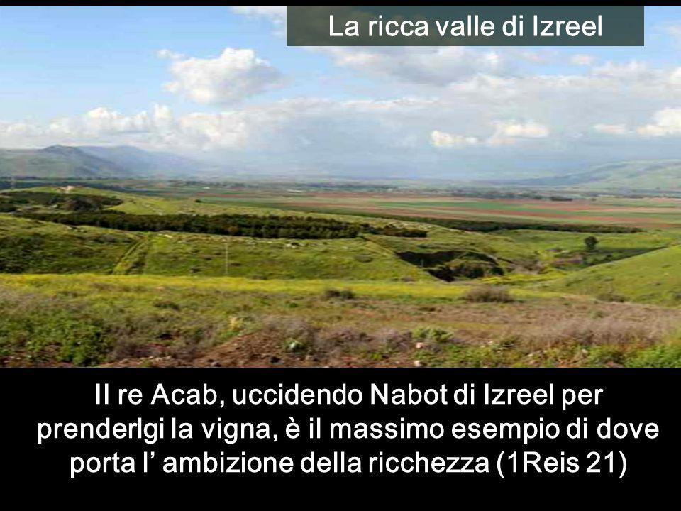 La ricca valle di Izreel