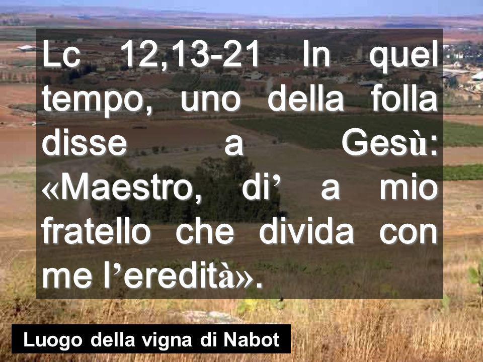 Luogo della vigna di Nabot