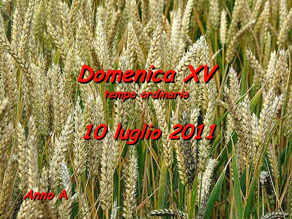Domenica XV tempo ordinario 10 luglio 2011 Anno A