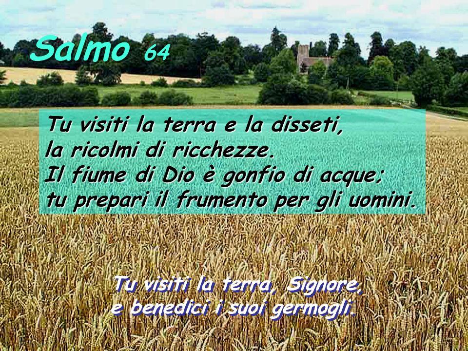 Salmo 64 Tu visiti la terra e la disseti, la ricolmi di ricchezze.