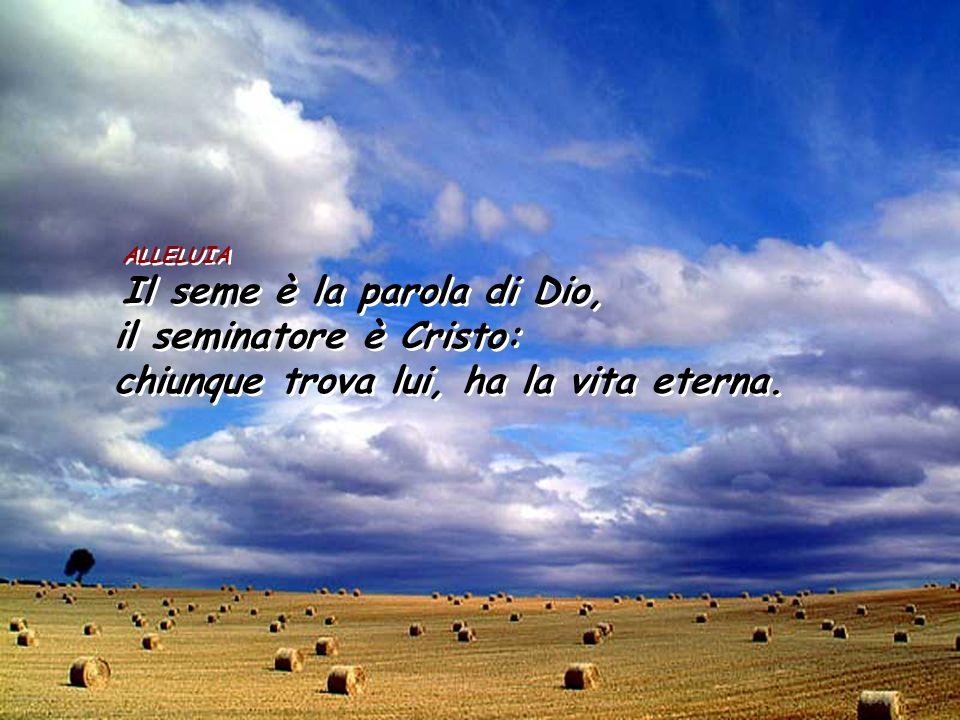 il seminatore è Cristo: chiunque trova lui, ha la vita eterna.