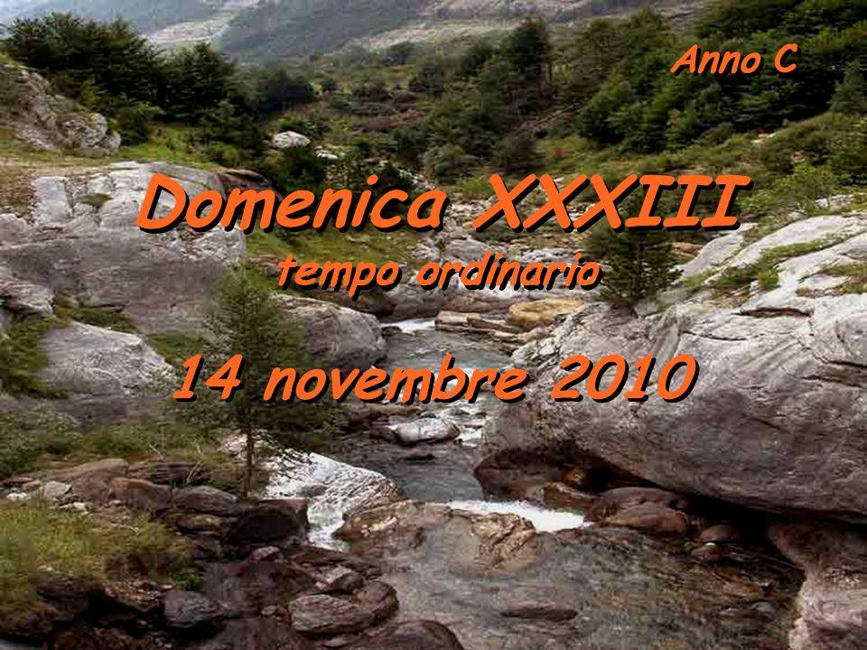 Anno C Domenica XXXIII tempo ordinario 14 novembre 2010