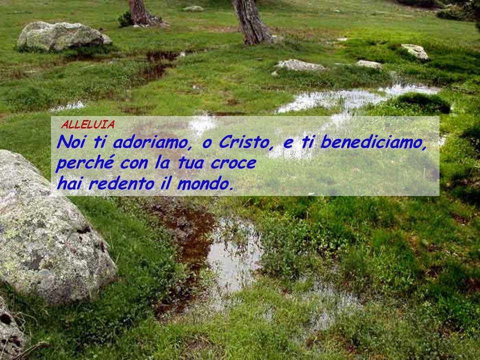 Noi ti adoriamo, o Cristo, e ti benediciamo, perché con la tua croce