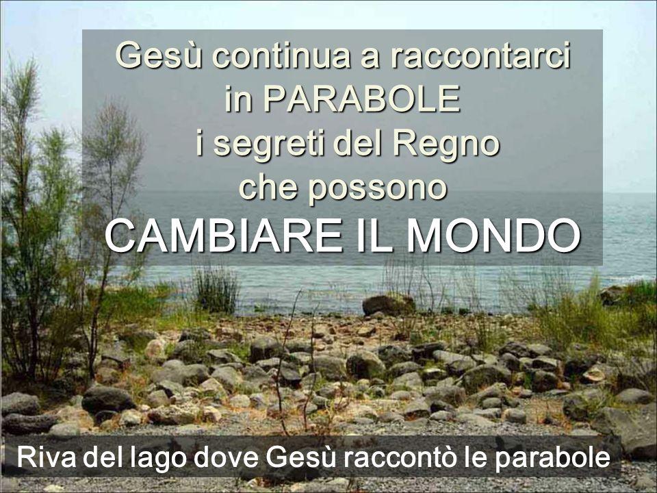 Riva del lago dove Gesù raccontò le parabole