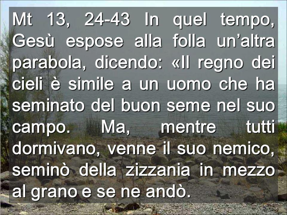 Mt 13, 24-43 In quel tempo, Gesù espose alla folla un'altra parabola, dicendo: «Il regno dei cieli è simile a un uomo che ha seminato del buon seme nel suo campo.