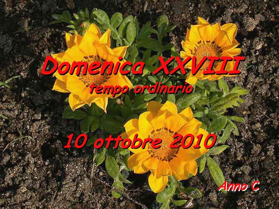 Domenica XXVIII tempo ordinario 10 ottobre 2010 Anno C