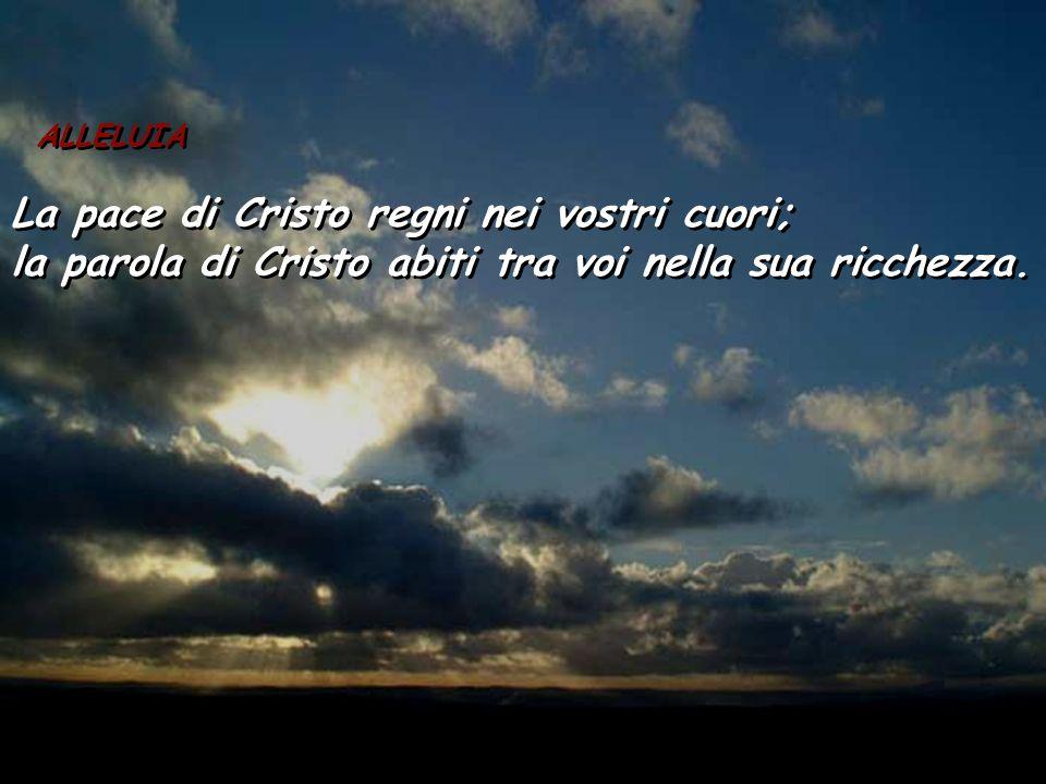La pace di Cristo regni nei vostri cuori;