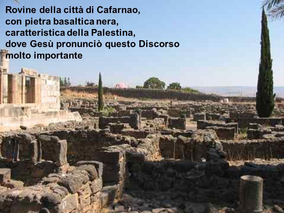 Rovine della città di Cafarnao,