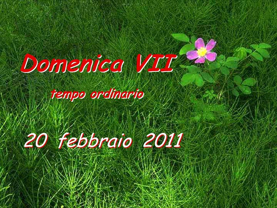 Domenica VII tempo ordinario 20 febbraio 2011