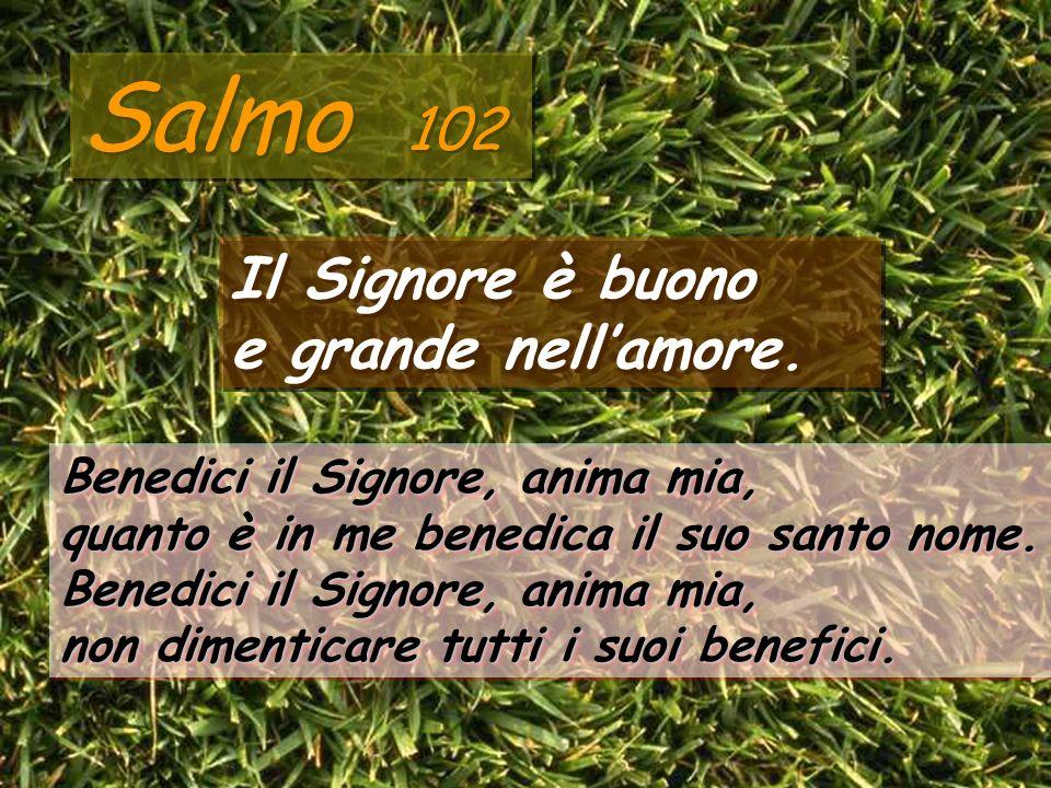 Salmo 102 Il Signore è buono e grande nell'amore.