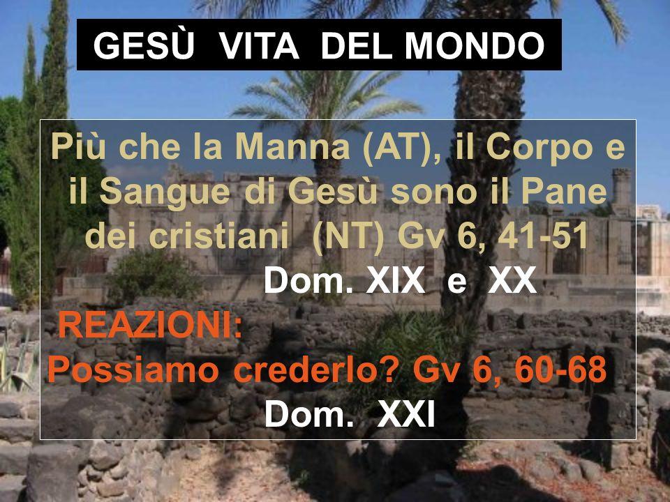 GESÙ VITA DEL MONDO Più che la Manna (AT), il Corpo e il Sangue di Gesù sono il Pane dei cristiani (NT) Gv 6, 41-51 Dom. XIX e XX.