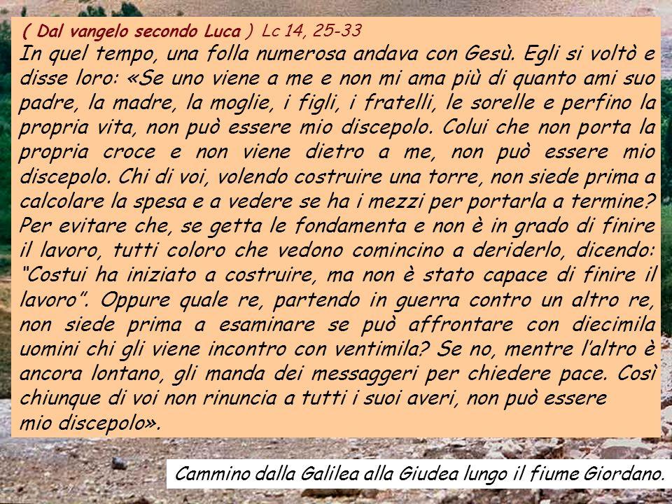 ( Dal vangelo secondo Luca ) Lc 14, 25-33