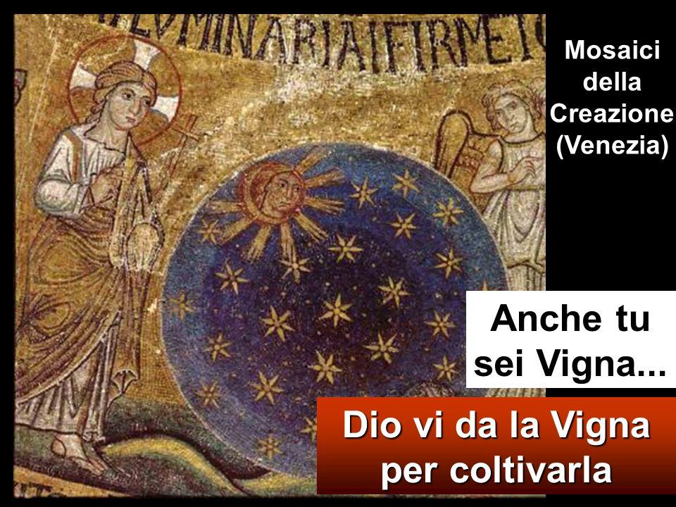 Mosaici della Creazione (Venezia)