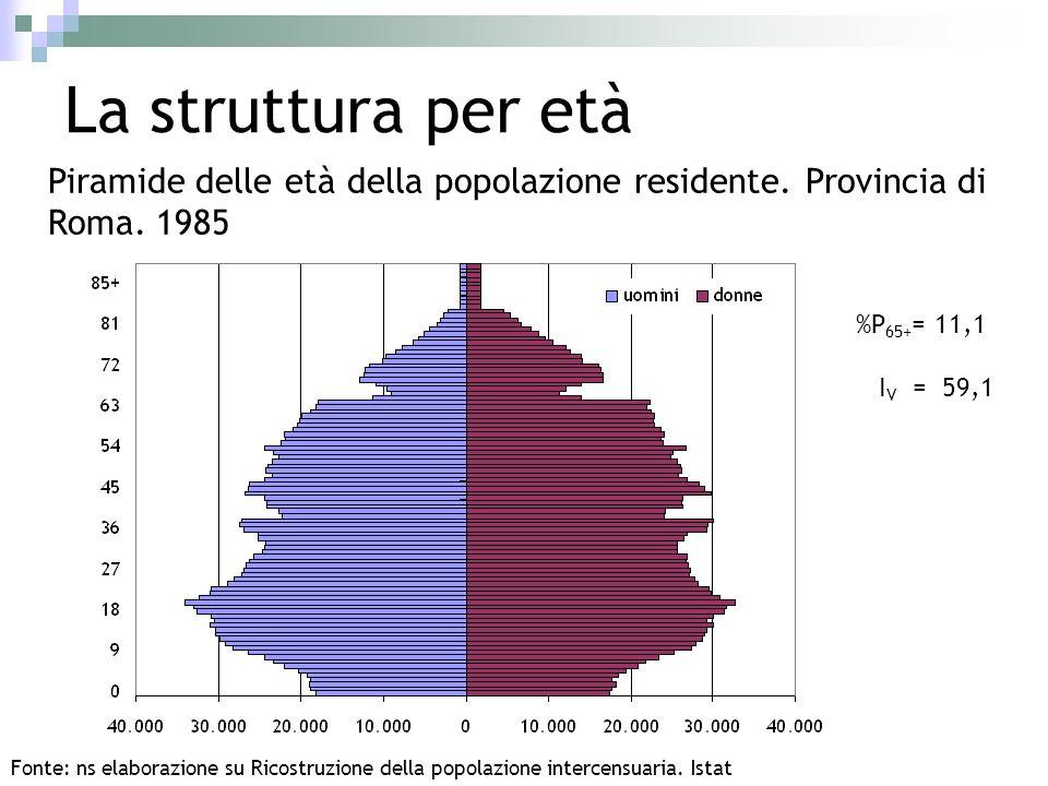 La struttura per età Piramide delle età della popolazione residente. Provincia di Roma. 1985. %P65+= 11,1.