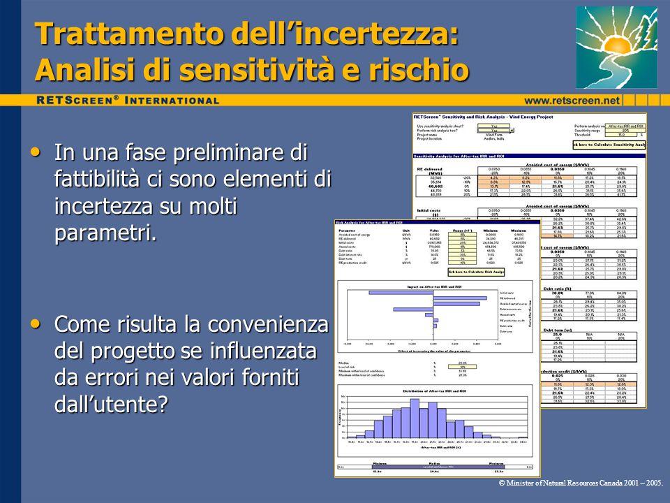 Trattamento dell'incertezza: Analisi di sensitività e rischio