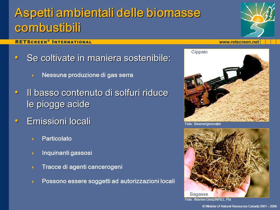Aspetti ambientali delle biomasse combustibili
