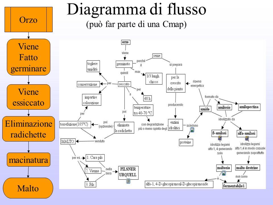 Diagramma di flusso (può far parte di una Cmap)