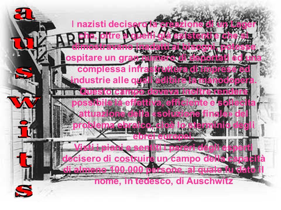 I nazisti decisero la creazione di un Lager che, oltre a quelli già esistenti e che si dimostravano inadatti ai bisogni, potesse ospitare un gran numero di deportati ed una complessa infrastruttura di imprese ed industrie alle quali adibire la manodopera. Questo campo doveva inoltre rendere possibile la effettiva, efficiente e sollecita attuazione della «soluzione finale» del problema ebraico, cioè lo sterminio degli ebrei europei.