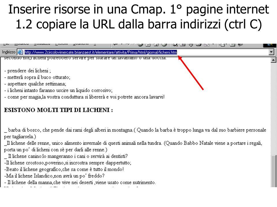 Inserire risorse in una Cmap. 1° pagine internet 1