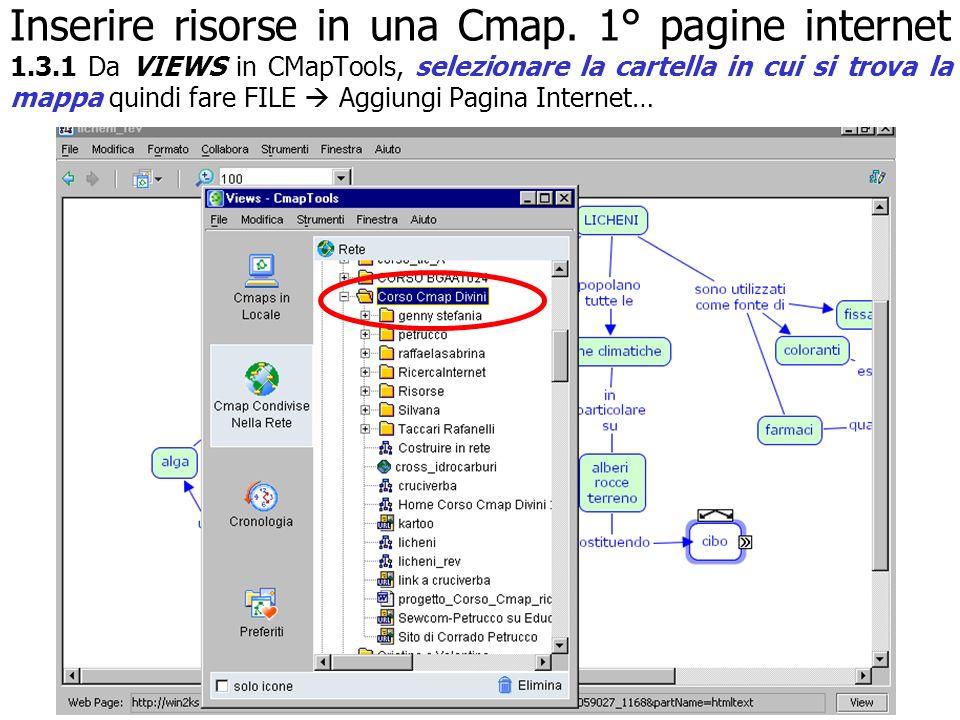 Inserire risorse in una Cmap. 1° pagine internet 1. 3