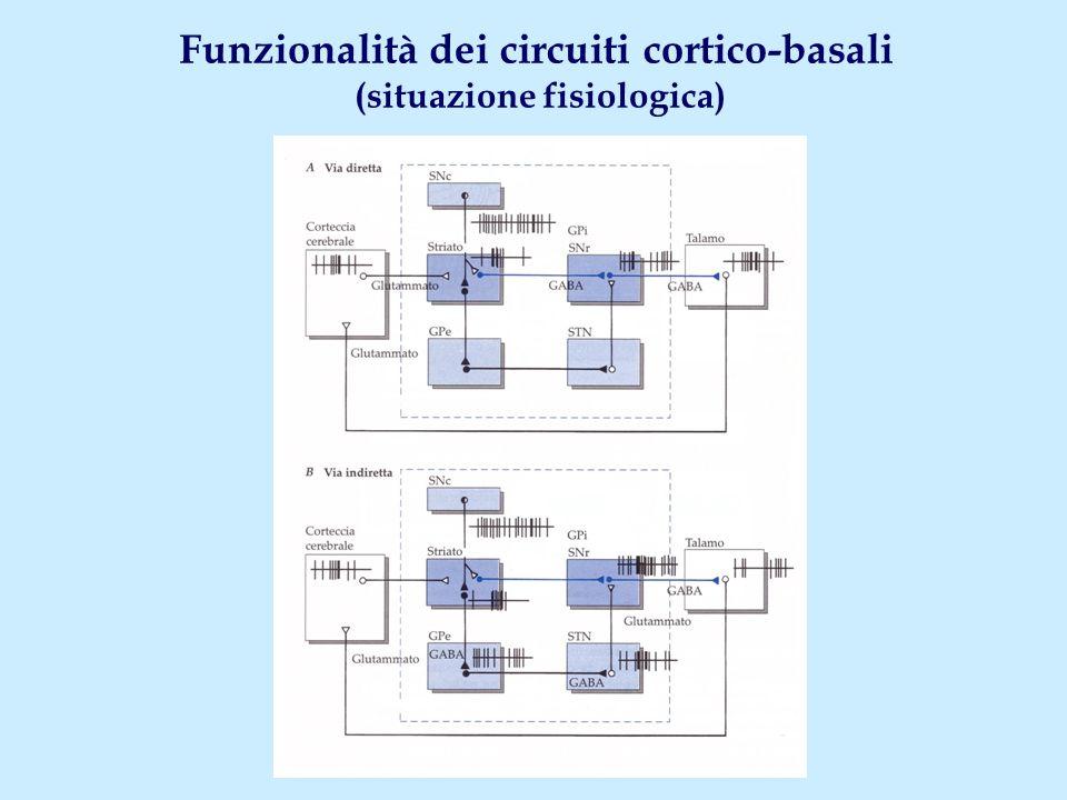 Funzionalità dei circuiti cortico-basali (situazione fisiologica)