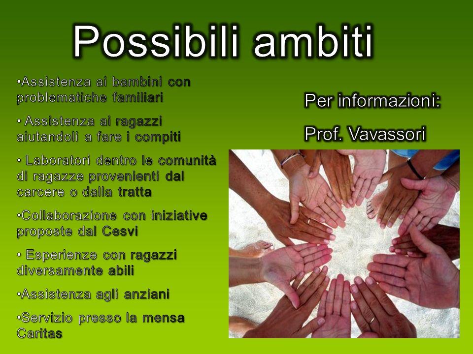 Possibili ambiti Per informazioni: Prof. Vavassori