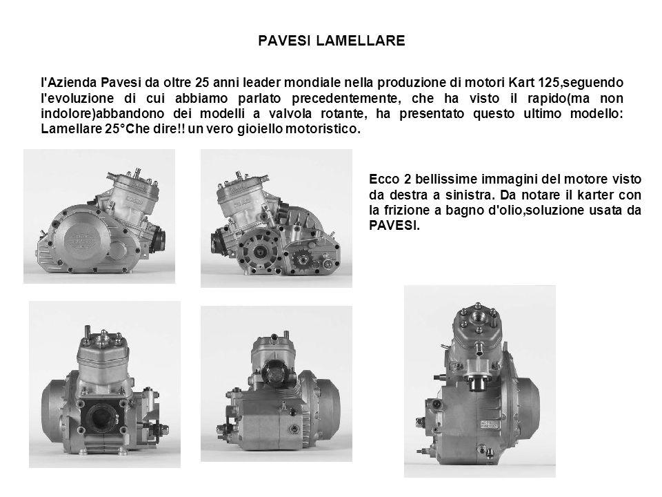 PAVESI LAMELLARE