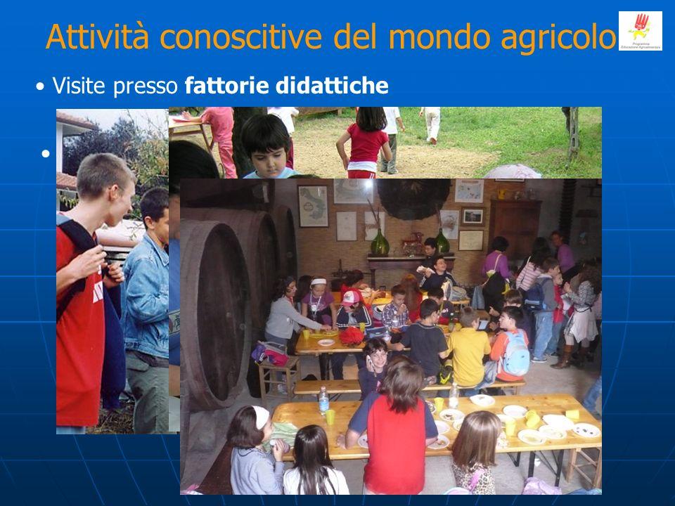 Attività conoscitive del mondo agricolo
