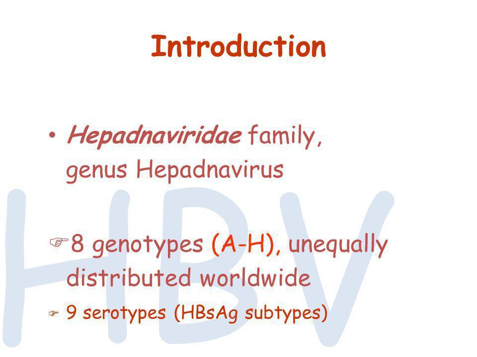 HBV Introduction Hepadnaviridae family, genus Hepadnavirus