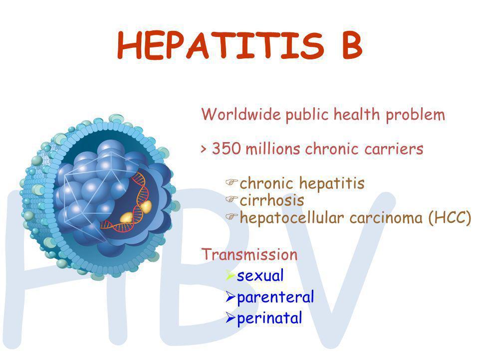 HBV HEPATITIS B Worldwide public health problem