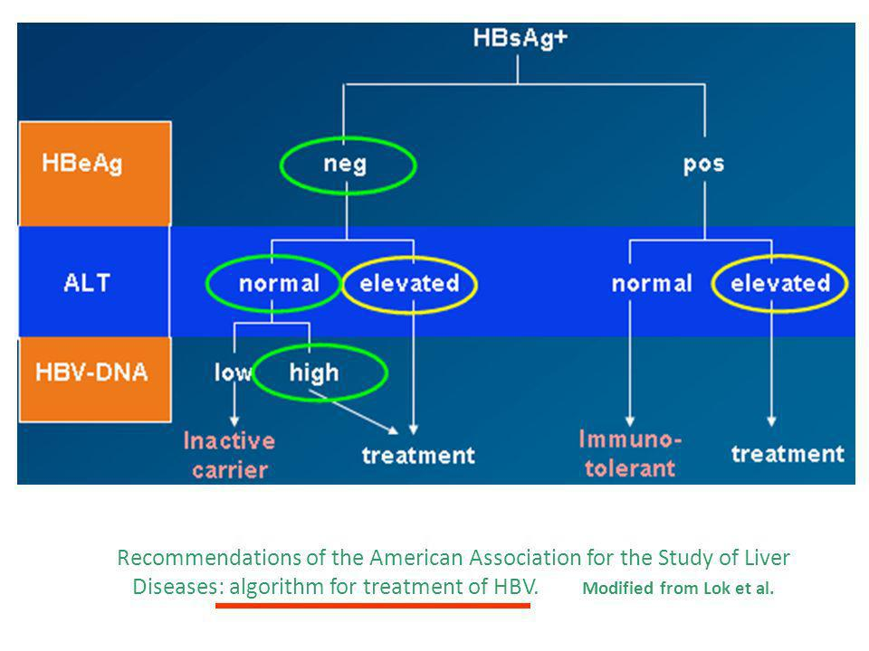 Recommendations of the American Association for the Study of Liver Diseases: algorithm for treatment of HBV.